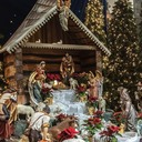 Christmas at St. Adalbert photo album thumbnail 1